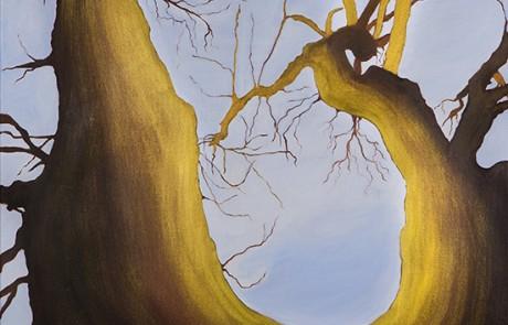 SIGO PLANTANDO ÁRBOLES IX (70 x 70 cm) Óleo sobre Lienzo
